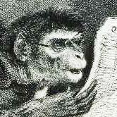 Monkeyana cover